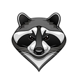 Cartoon wild raccoon animal mascot vector image vector image