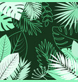 summer jungle green leaves background vector image vector image