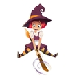 a Halloween Witch vector image vector image