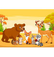 Cartoon wild animals in autumn forest