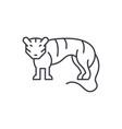 tiger line icon concept tiger linear vector image vector image