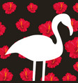 white silhouette flamingo on dark background red vector image