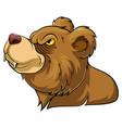 bear wild animal head mascot vector image vector image