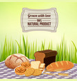 bread background vector image vector image