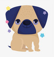 cute pug dog domestic cartoon animal pets vector image