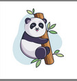funny lovely panda climbs on bamboo vector image