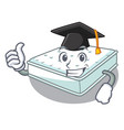 graduation mattress in on the characters bedroom vector image