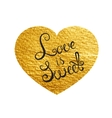 Heart Love Gold Watercolor Texture Paint Stain vector image vector image