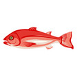 raw northern red snapper icon isolated on white vector image vector image