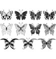 set of eleven ornamental butterflies vector image vector image