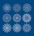set of nine snowflakes christmas decoration vector image