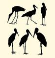 storks birds animal silhouette vector image vector image