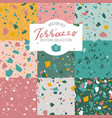 terrazzo seamless pattern collection pastel vector image