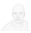 wire frame mans head vector image vector image