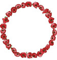 circle floral frame of hand drawn poppies vector image