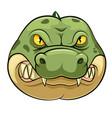 crocodile wild animal head mascot vector image vector image