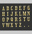 editable text effect golden luxury text style vector image vector image
