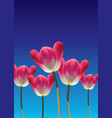 realistic 3d tulips vector image vector image