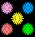 Colorful flowers isolated on black background set vector image
