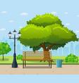 city park bench under a big green tree vector image vector image