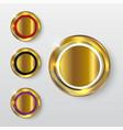 button premium glossy gold 2 vector image