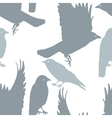 Pattern seamless with birds plus EPS10 vector image vector image