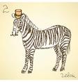Sketch fancy zebra in vintage style vector image vector image