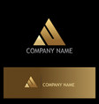 triangle gold company logo vector image vector image
