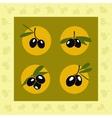 Green and black olives set vector image