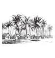 coastal brazilian village vintage vector image vector image