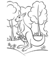 kangaroo in the forest vector image vector image