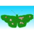 lawn vector image vector image