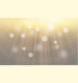 light flare special effect with rays of light and vector image vector image