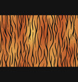 tiger skin seamless background on graphic art vector image