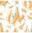 seabuckthorn seamless pattern abstract vector image