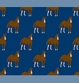 brown horse on navy blue background vector image
