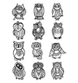 collection of cute colorful owls vector image