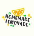 homemade lemonade typography for poster vector image