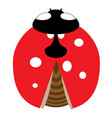 lady-bird or ladybug isolated on light white vector image vector image