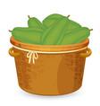 a backet of papaya vector image vector image