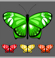 butterfly set 8 vector image vector image