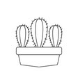 cactus in pot plants line style icon vector image vector image