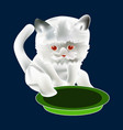 cat sits near bowl icon symbol design white vector image