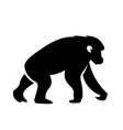 chimpanzee icon vector image vector image