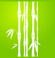 stems of bamboo in sketch style on dark background vector image vector image