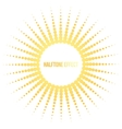 sun with halftone effect vector image