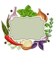 Frame design with various herbs and spices vector image