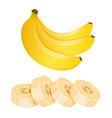 bunch of three bananas and sliced banana pieces vector image vector image