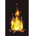 cartoon bonfire on dark background vector image vector image