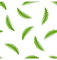 cartoon palm leaf pattern vector image vector image